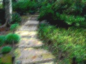 kyuu_furukawa_path2