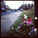 Flowers by the crash site (Kate Ryan/WTOP)