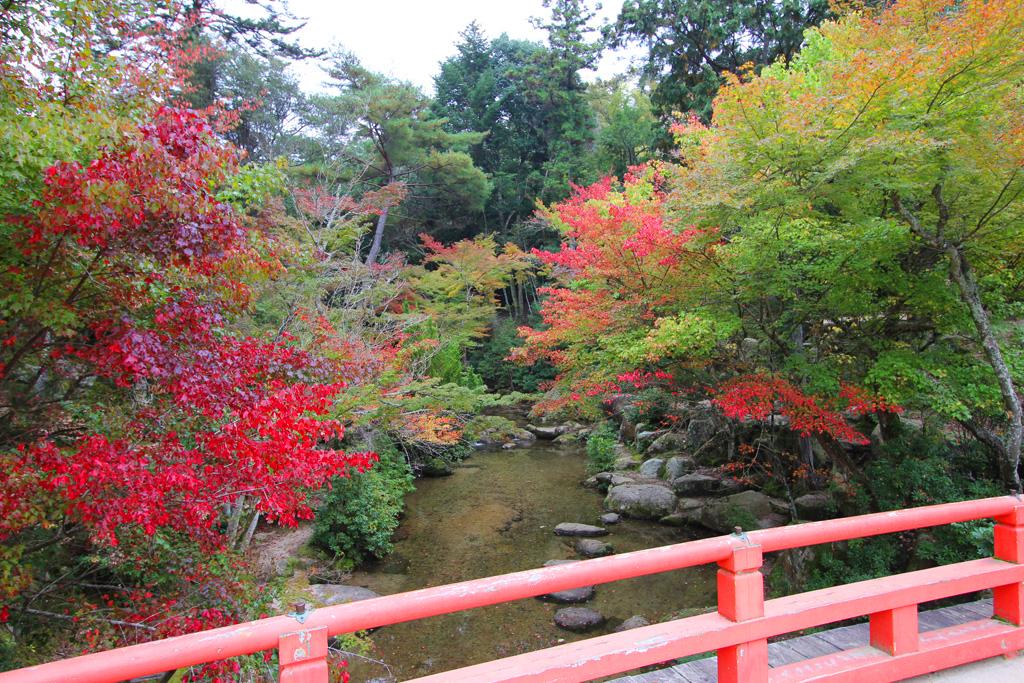 Miyajima One day tour Part2 (13)