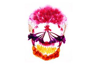 押し花アート作品集 『flora』 の書籍化プロジェクト_03