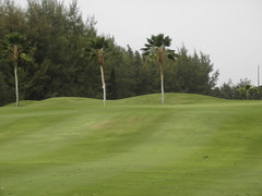 Hawaii Prince Golf Club 053
