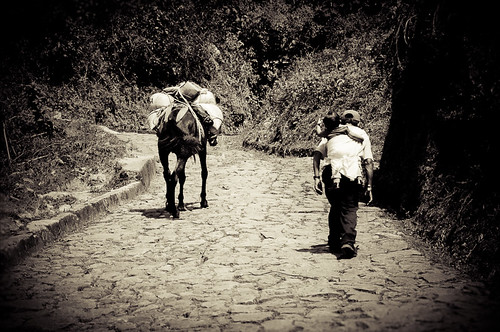 Viaje a la Finca Muxbal (19)