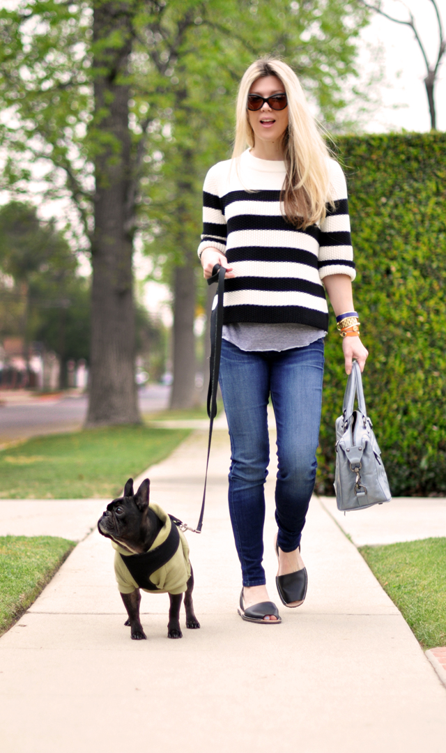 easy outfit - jeans-avarcas-striped sweater-french bulldog