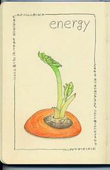 2012_02_15_carrot_01
