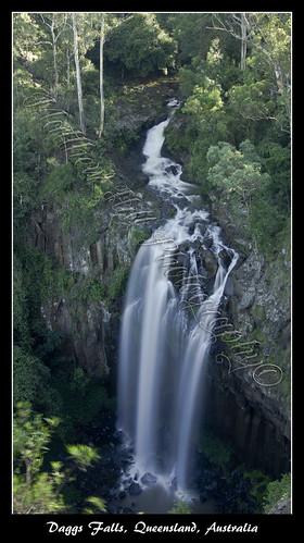 trees portrait green nature water leaves landscape waterfall rocks slow sony australia a33 falls shutter queensland 1855mm alpha daggs rockes