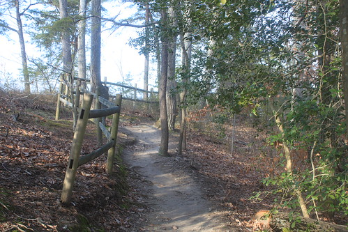 Mason Neck State Park - Bay View Trail - Trail