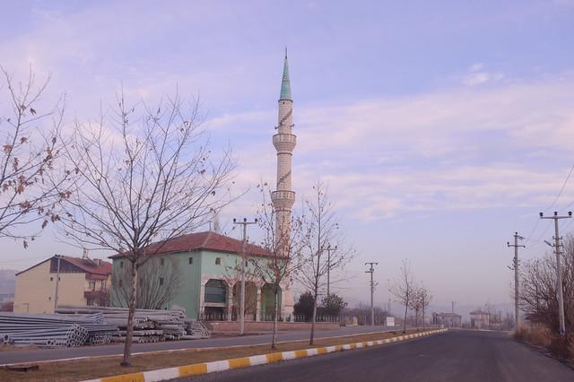 Turkey-2012-01-05-6920