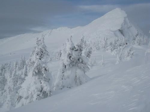 Mount Mackenzie