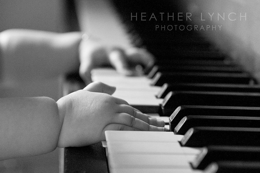 HeatherLynchPhotographySP4