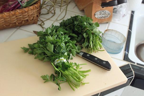 parsleycilantro