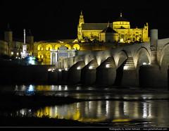 View across the Guadalquivir @ Night, Cordoba, Spain