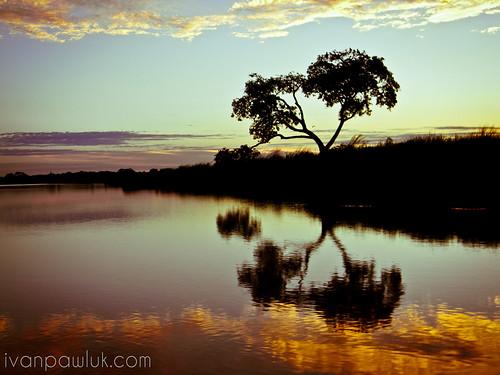 Reflejos en islas de Santa Rosa de Calchines - Santa Fe by IvanPawluk2