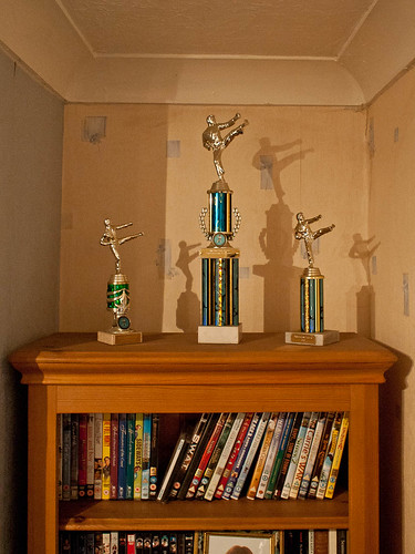 1000/789: 18 April 2012: Karate Trophies by nmonckton