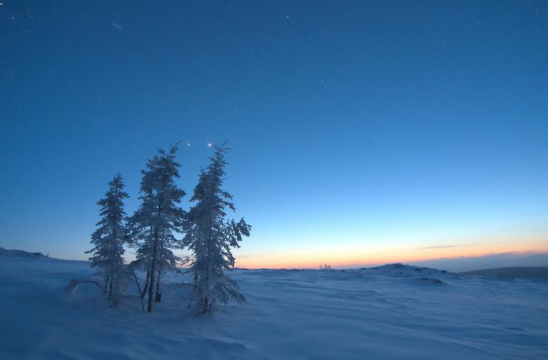 A-frosty-world