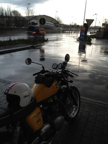 Pioggia by gdionori