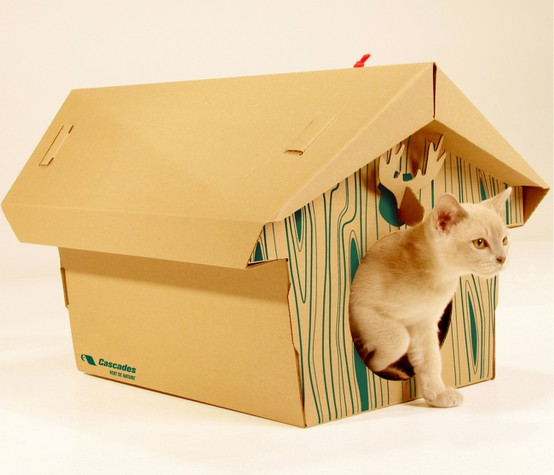 cats&cardboard_006