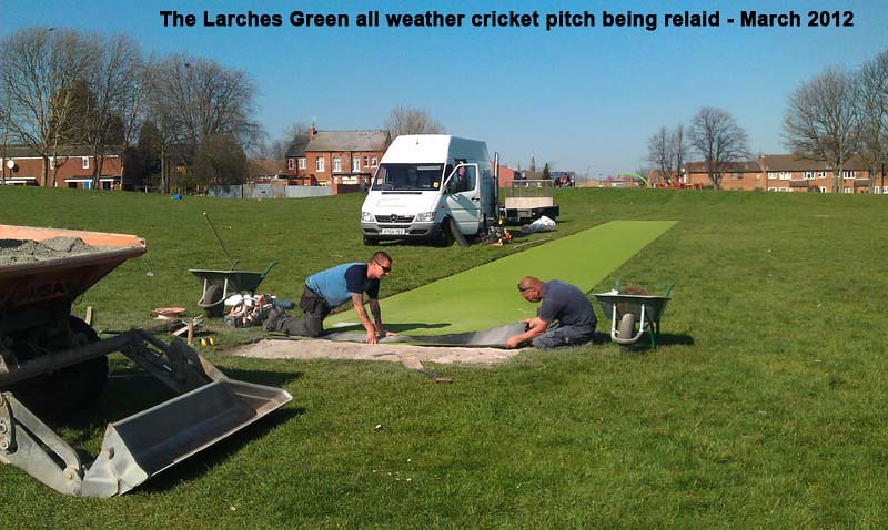 larches-green