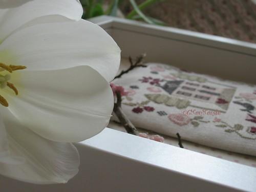 cmonmonde v'la le printemps nouveauté