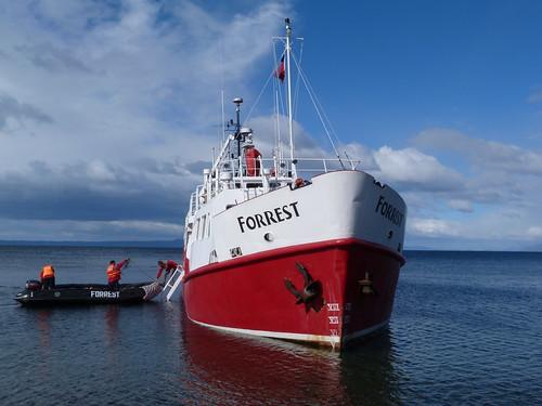 El buque M/N Forrest