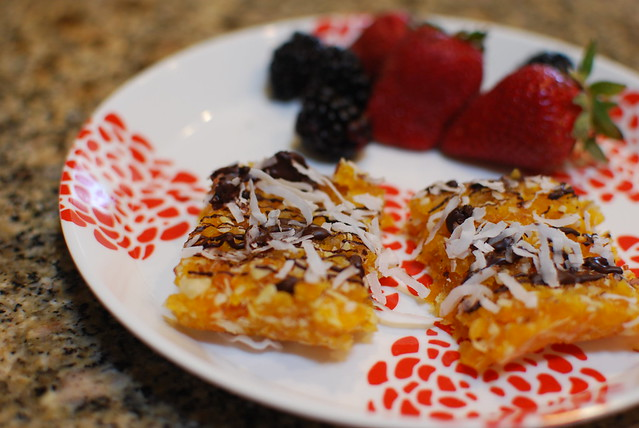 Chocolate Apricot-Coconut-Nut Bars (recipe on blog)