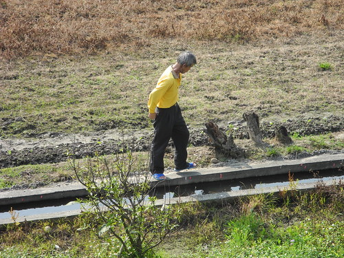 Farmer in Hsinchu