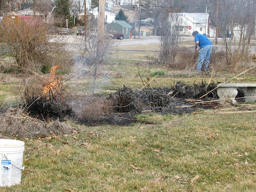 burning the tall grasses