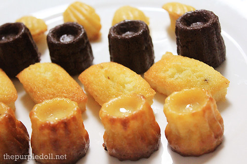 Chocolate and Vanilla Canelle, Madeleine and Financier
