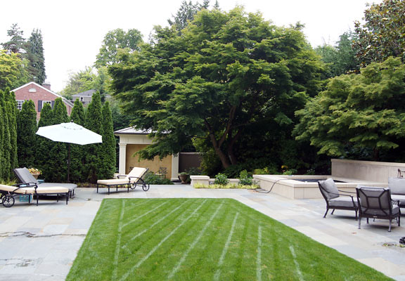 mature maple trees provide shade and privacy to outdoor living room.