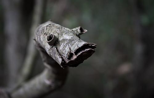 A wooden snake