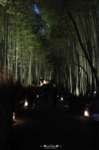 Arashiyama 嵐山 - 14