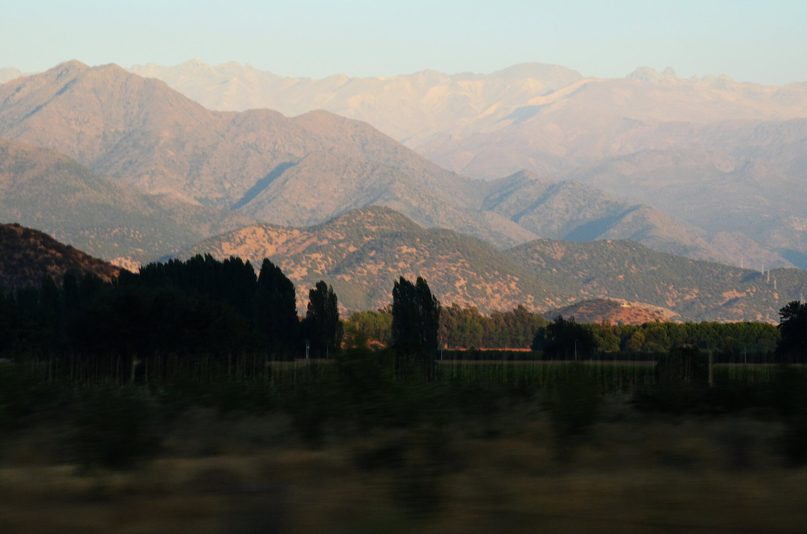 Visit to Colchagua Valley