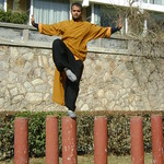 Tue, 15/03/2011 - 07:27 - FIRST INDIAN SHAOLIN WARRIOR SHIFU KANISHKA DOING POLE BALANCING TRAINING IN SHAOLIN TEMPLE WUSHU GUAN WWW.SHAOLININDIA.COM Shaolin Kung Fu India