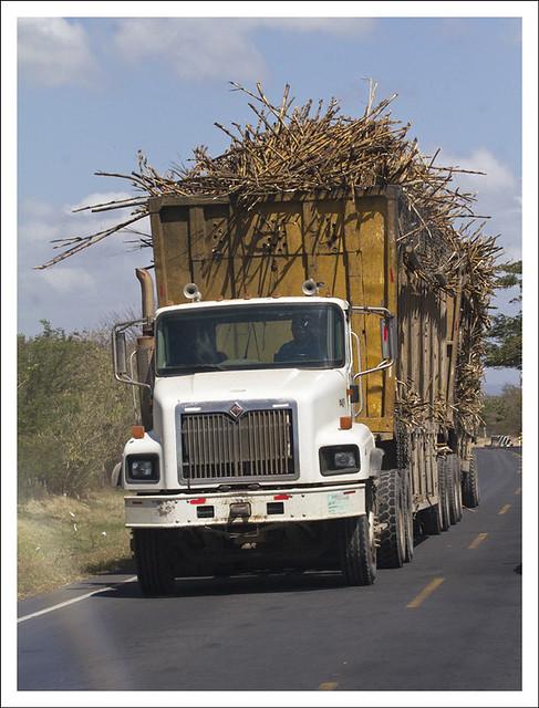 Sugar Cane Truck