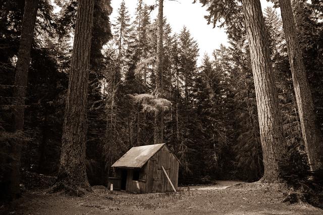 Scenes at a cabin 5