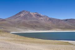 Cile - Lagune Miscanti e Miniques