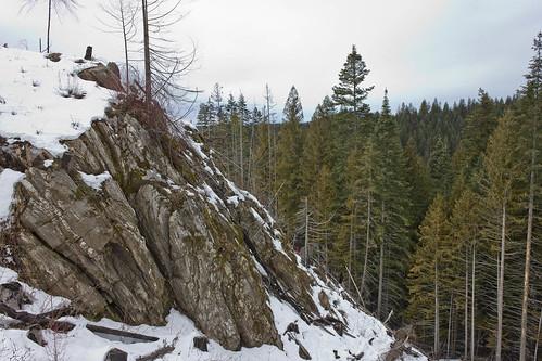 trees rock canon landscape idaho 550 t2i canont2i