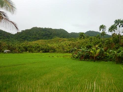 Luzon-Claveria-Laoag (18)