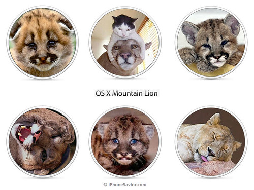 Leaked OS X Mountain Lion Images Apple Rejected