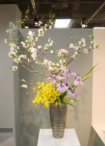 Shoka Ikenobo arrangement with different orchids and blossom branches