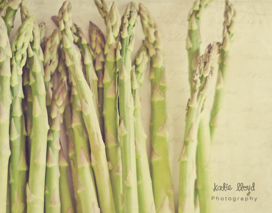 asparagus-love---11x14