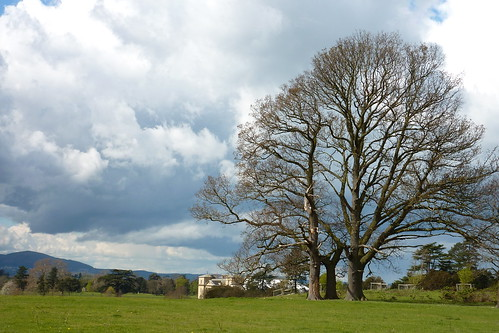 National Trust - Croome Court