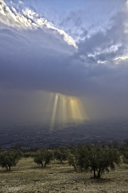 Luce divina