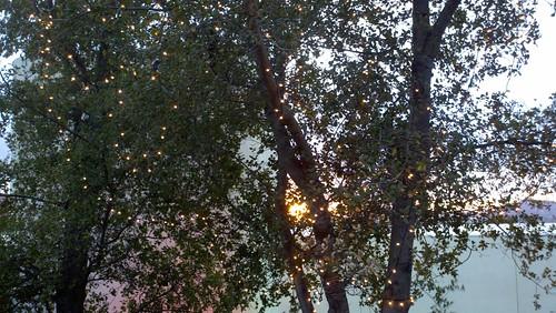 Fairy lights sunset