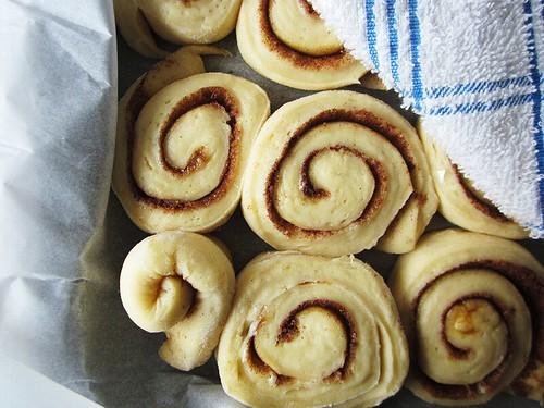 rising buns