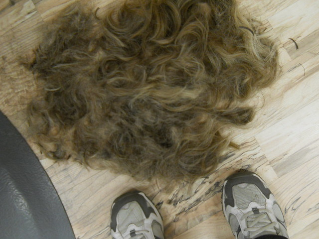 My Hair On The Floor Of Great Clips Flickr Photo Sharing