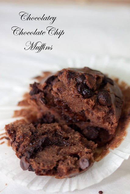 Chocolatey Chocolate Chip Muffins