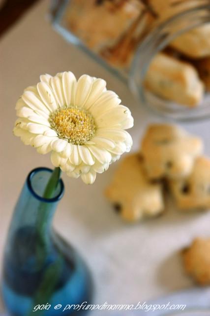 Biscotti a primavera