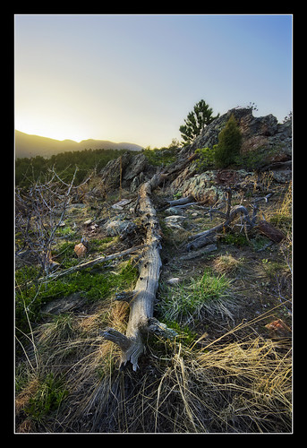 sunset foothills landscape log colorado rocks glow hiking sony wideangle bluesky ridge boulders pines cloudless alpha mountainbiking lastlight fallentrees a55 sigma1020 whiteranchopenspacepark