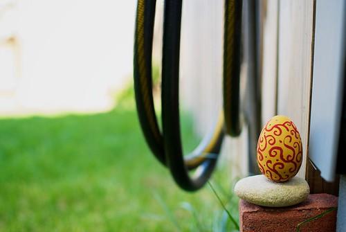 Egg 4 close