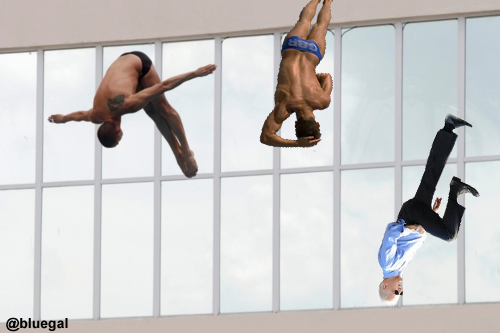 Biden Dive BFD by @bluegal